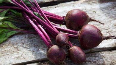 Photo of 必學簡易紅菜頭食譜|抗衰老要吃紅菜頭:可製成高纖低脂小食
