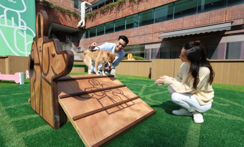 Photo of 【狗狗好去處】免費入場!沙田全新2500呎寵物樂園 設放電區+野餐區